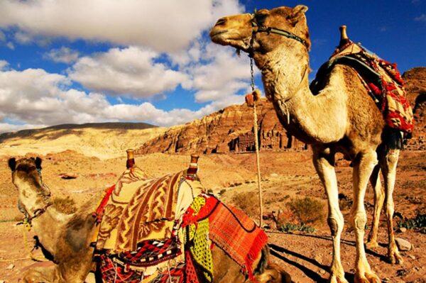 Maroc made in Africa